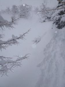 ボサボサ雪